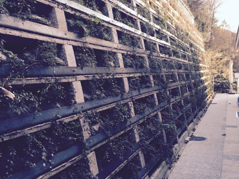 SVIZZERA Ticino 800x600 - Muri di sostegno Krainerwand fino a 12 mt. inverditi tipo terra armata - arredo-urbano-